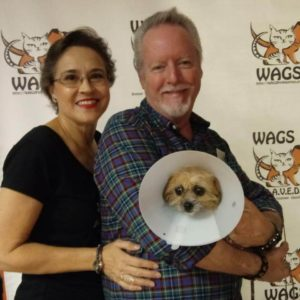 elderly couple adopt dog at wags