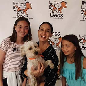 3 Pets were adopted today 11/11/19 WAGS