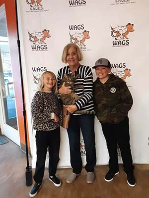 kids enjoy adopt a cat at wags event
