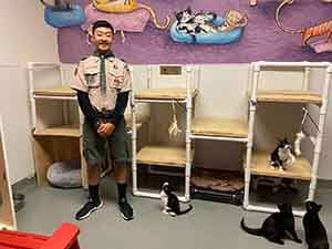 volunteer boy scout with the cats at wags