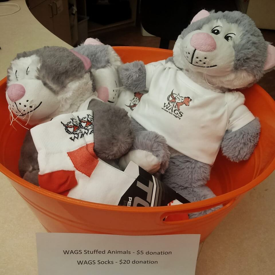 wags stuff toys available now