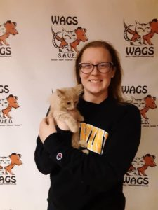 sweet girl adopt a cute little kitten at wags