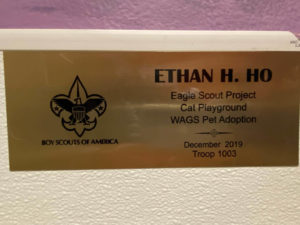 ethan h ho boy scout wags