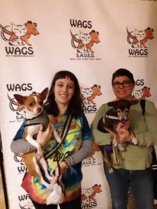 taquito is now adopted at wags
