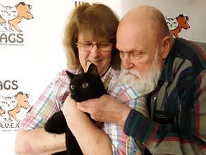 swett elderly adopt a black cat at wags