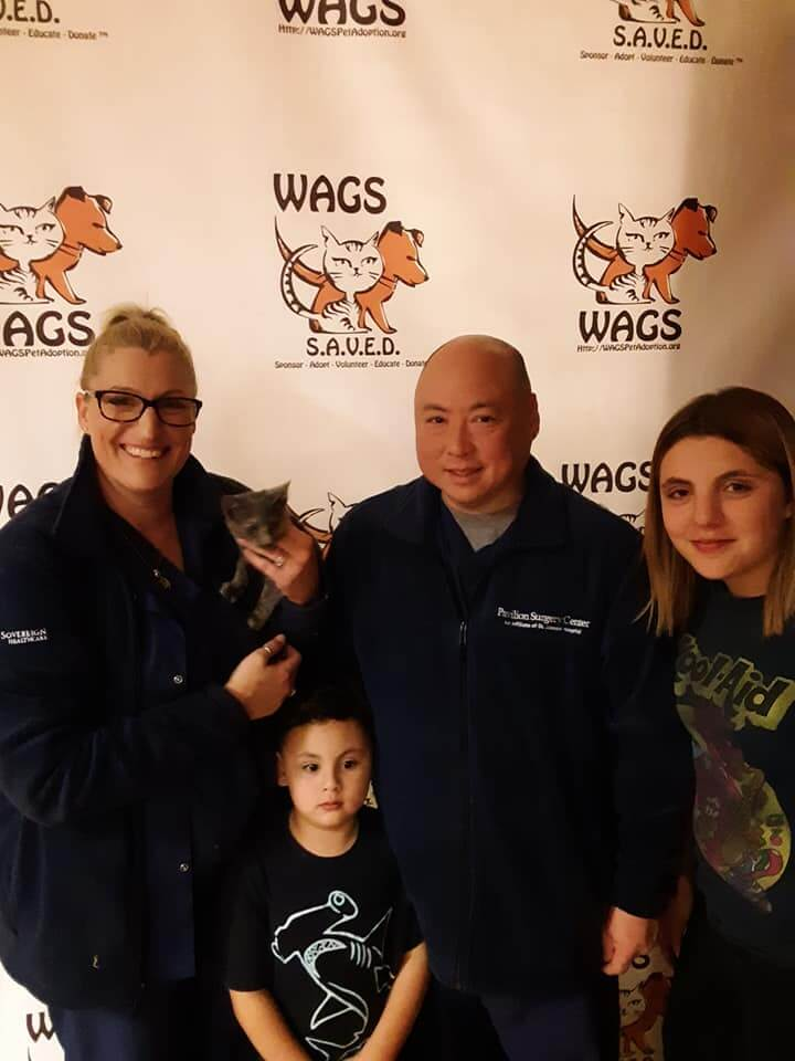 sweet family got a kitten adopted at wags