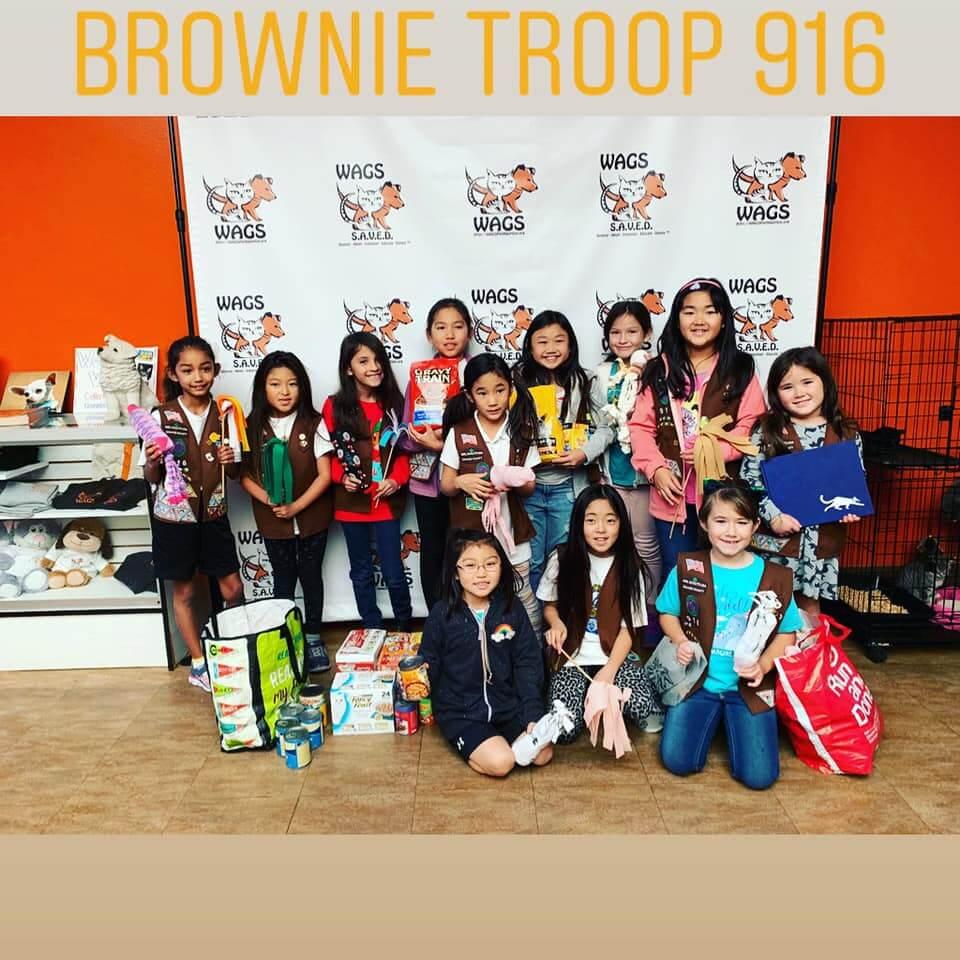 brownie troop 916 donate at wags