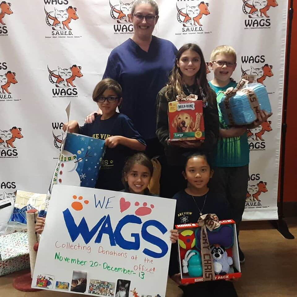 lake view of school donate at wags