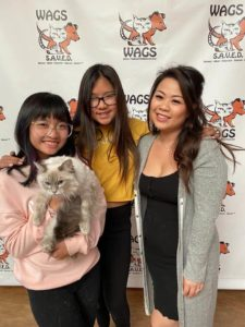 sisters adopt new wags cat