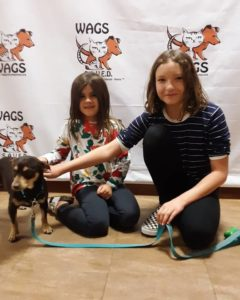 Holiday WAGS adoption two sisters