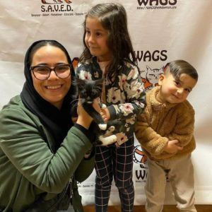 brother and sister adopt kitten Holiday