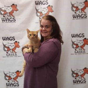 WAGS new mom for cat adoption holiday