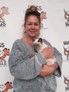 cute pose and warm hugs for adopted cat wags