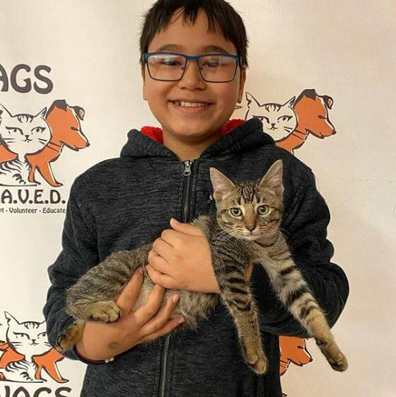 young guy happy adopt a cat at WAGS