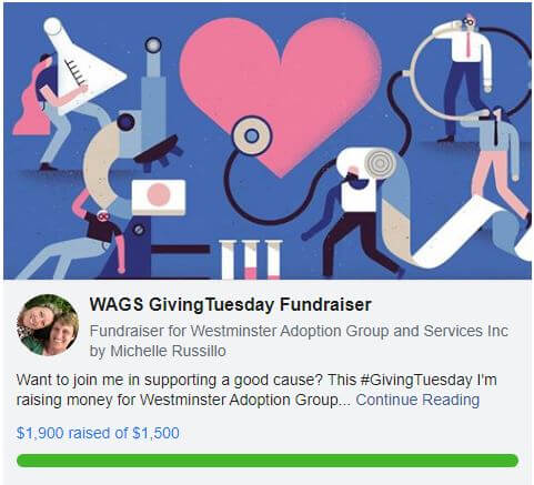 wags fundraiser giving
