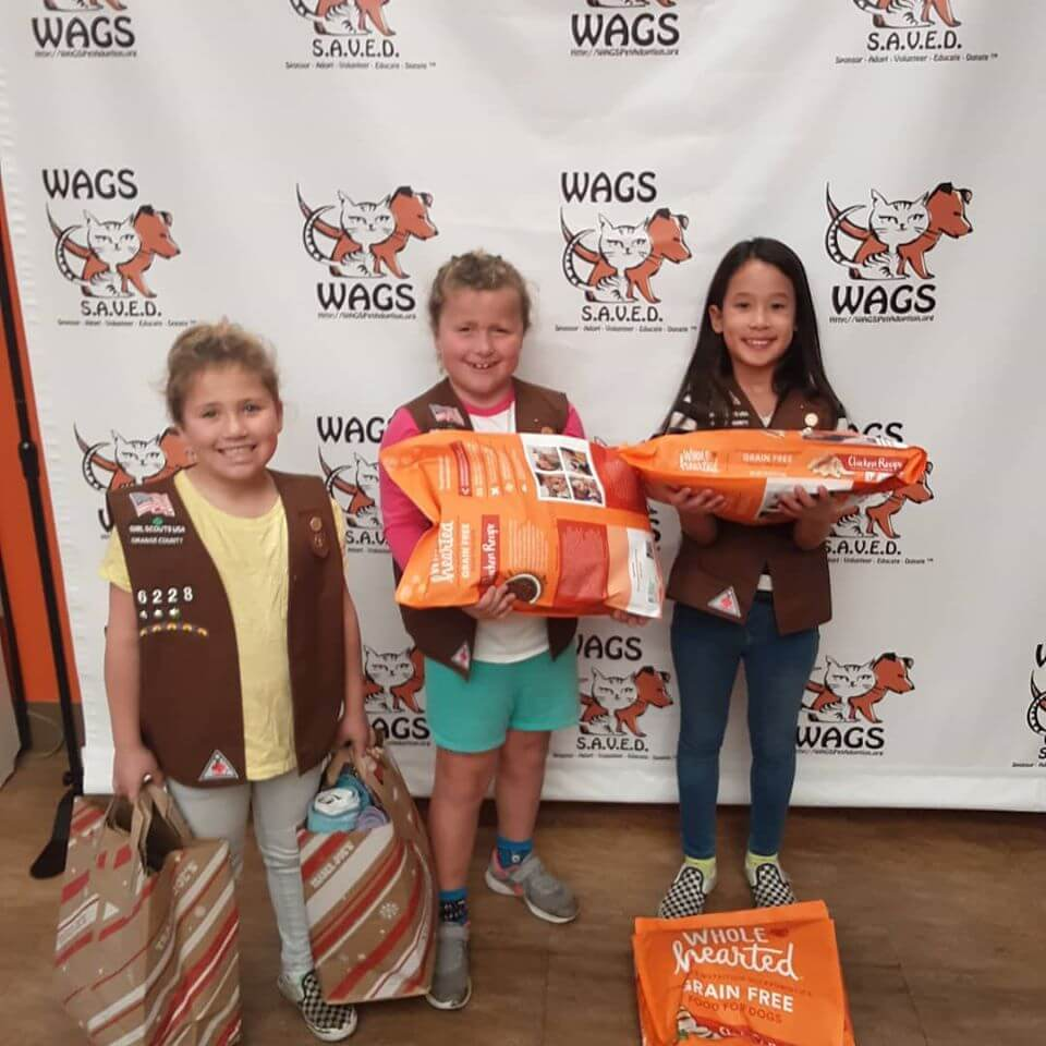 brownie trrop 6228 donations for WAGS
