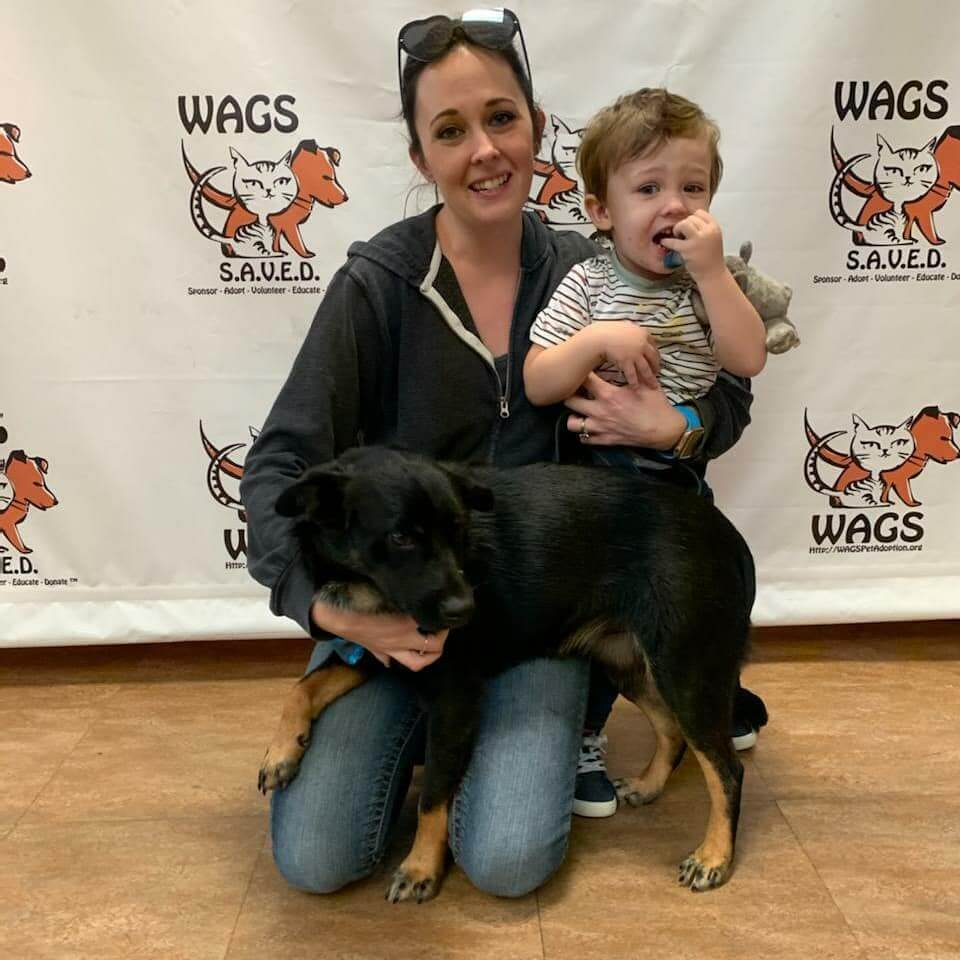 black dog with mom black jacet and kid