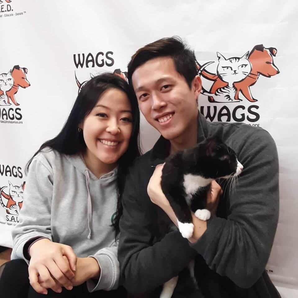 camery shy black cat with great smile couple