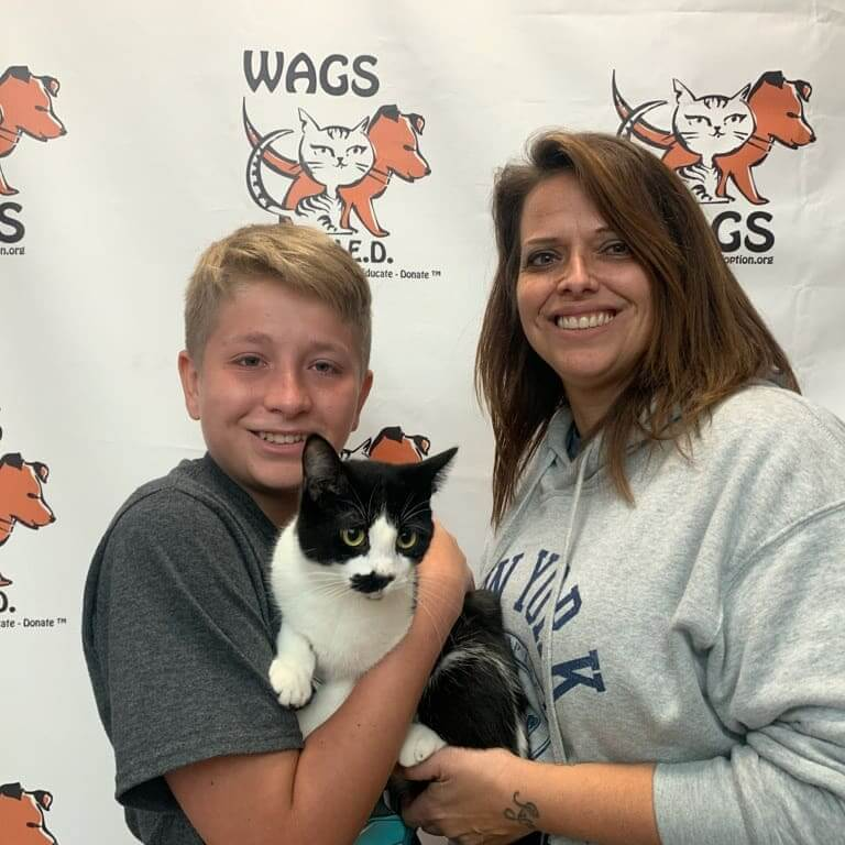 son and mom adopted otto cat purfect match