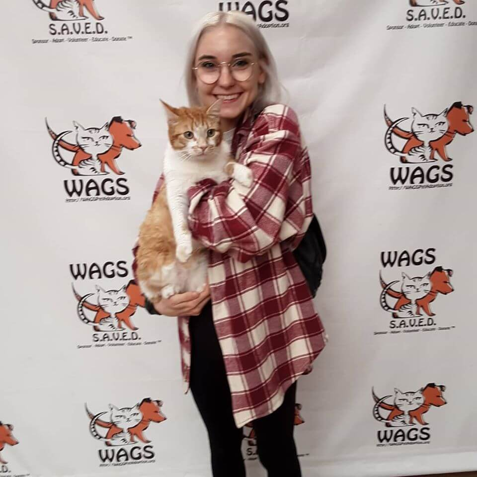women in longwhite hair and red checkered adopted cat orange tabby