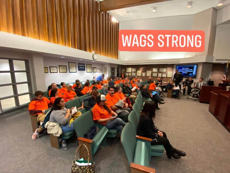 WAGS Strong volunteer orange shirt support WAGS