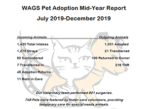 WAGS mid-year report